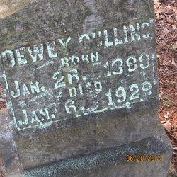 Dewey James Cullins
