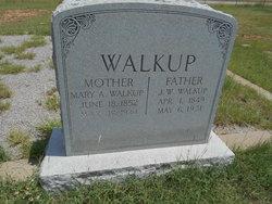 Mary Ann <i>Young</i> Walkup