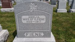 Amelia Fiene