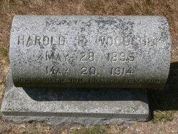 Harold F Woodcook