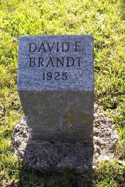 David Elgin Brandt