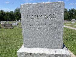 Felix Grundy Harrison