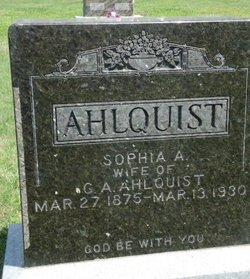 Sophia A Ahlquist