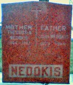 John Nedokis