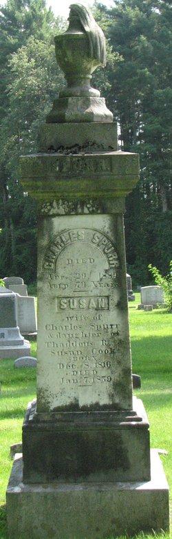 Susan <i>Cook</i> Spurr
