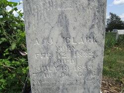 Andrew Jackson Clark, Sr