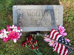 Shirley Ann <i>Jacobs</i> Molloy