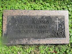 Alfred Ray Johnson