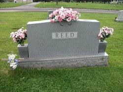 Avis <i>Beer</i> Reed