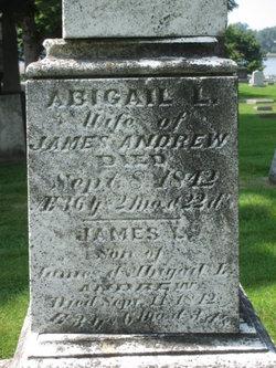 Abigail L Andrew