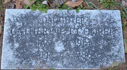 Catherine T Cooper