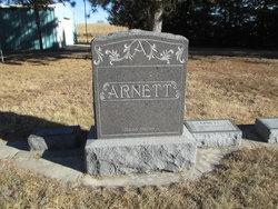 Charles A. Arnett