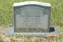 Ethel <i>Reed</i> Hawkins