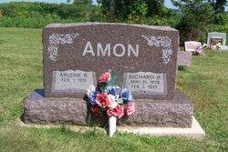 Richard B Amon