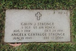 Gavin J Stronge