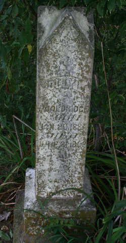 Annie L. Polly <i>Burrow/Burroughs</i> Wooldridge
