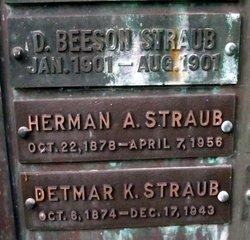 Herman A Straub