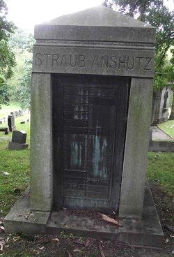 Norman J Straub