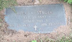 Alexander A Stroik