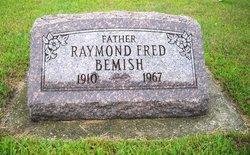 Raymond F Bemish