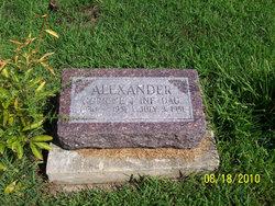 Corrine Patricia <i>Holtman</i> Alexander