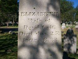 Elizabeth Betsey <i>Caulkins</i> Coit