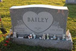 Lois Jean <i>Rauschenbach</i> Bailey