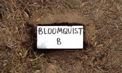 Blemie Bloomquist