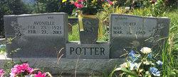 Jessie Otmer Potter