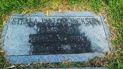 Stella Brown Brownie <i>Taylor</i> Jackson