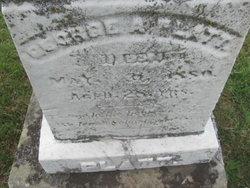 George A Platt