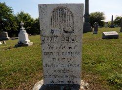 Ann Eliza Barnes