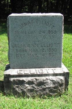 Julia Ann <i>McGonigle</i> Elliott