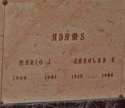 Mario J Adams