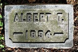 Albert Theodore Schmidt