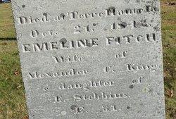 Emeline Fitch <i>Stebbins</i> King