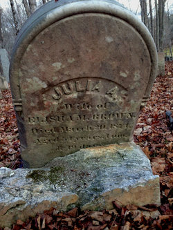 Julia Ann <i>Williams</i> Brown