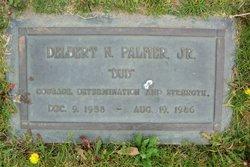 Delbert Neal Palmer