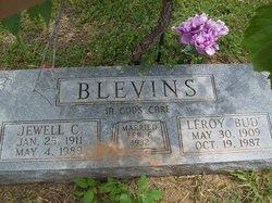 Leroy Bud Blevins