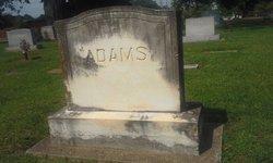 Rebecca Ann Adams