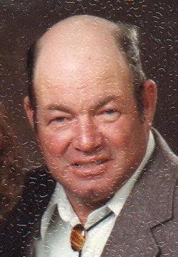Albert Lewis Allen