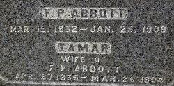 Tamar <i>Simpson</i> Abbott