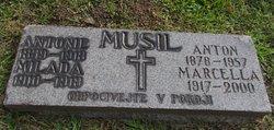 Marcella Musil