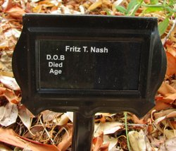 Fritz T Nash