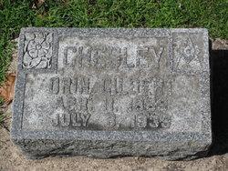 Orrin G Chesley