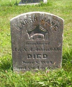 Sarah Jane Ashenfelder