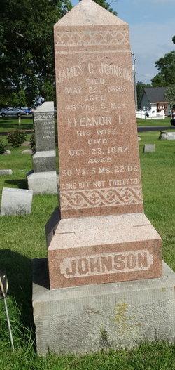 Eleanor Louisa <i>Nash</i> Johnson