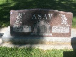 Carlos Egan Asay