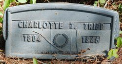 Charlotte <i>Thurlow</i> Tripp