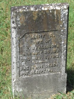 Mary Ann <i>Mariott</i> Allison